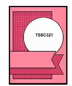 tssc321
