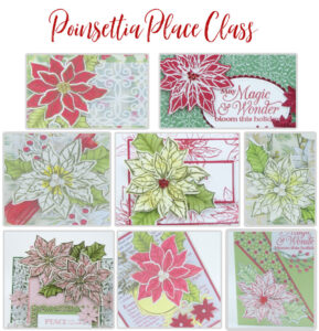 Poinsettia Place Class