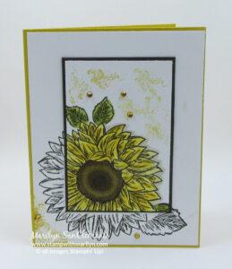 Sunflower Spotlight technique