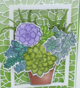 ombre simply succulent card